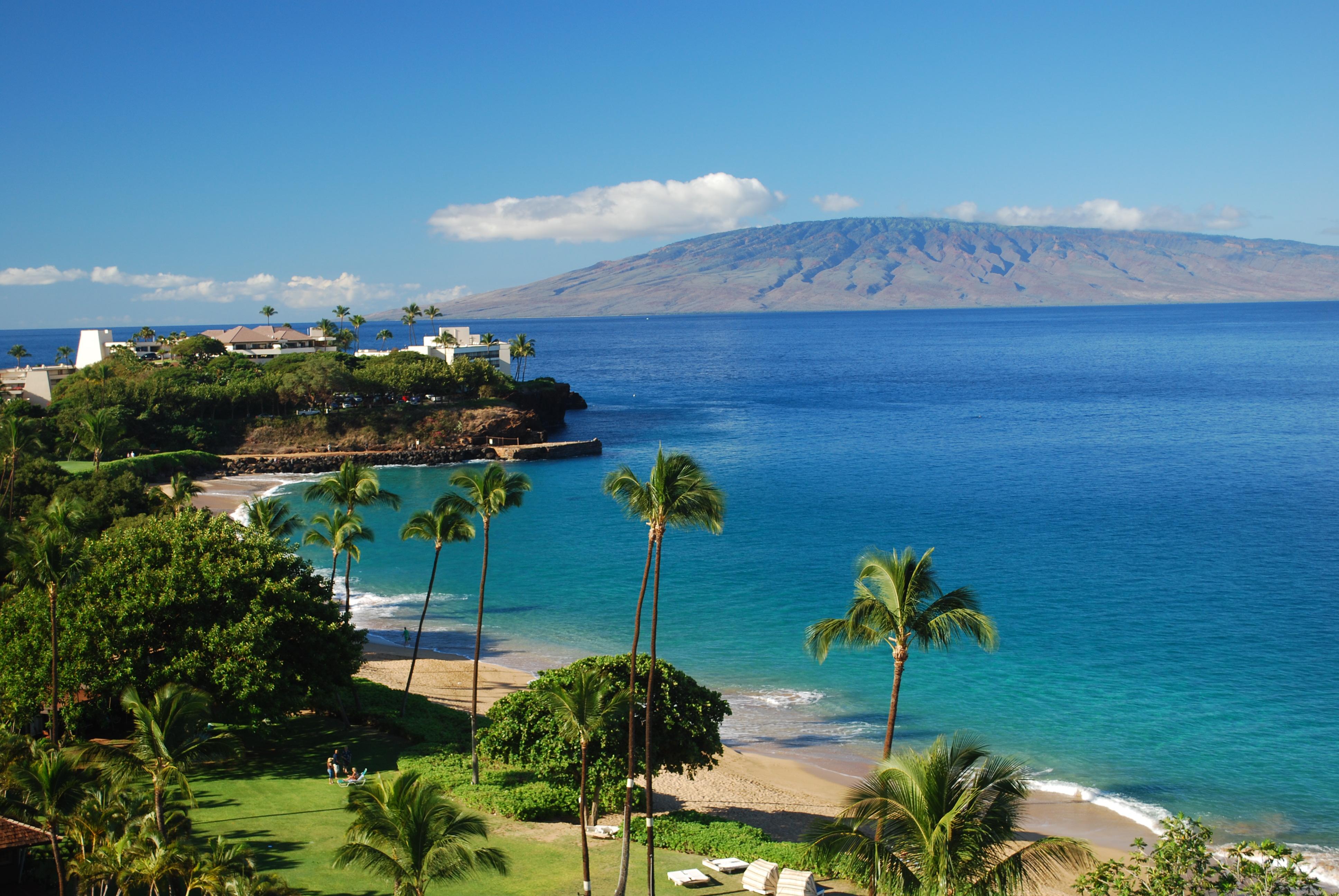 Dating Maui